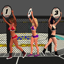 Fight Cage image 6
