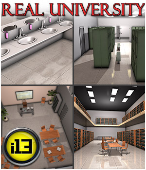 i13 Real University Software 3D Models ironman13