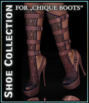 Shoe Collection for Chique Boots 2D Graphics 3D Figure Assets boundless