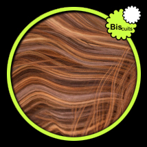 Biscuits RGB Blond for Hair Salon image 4