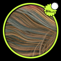 Biscuits RGB Blond for Hair Salon image 6