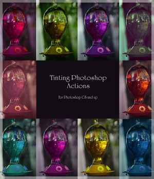 Tinting Photoshop Actions Merchant Resources 2D antje