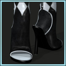 Shoe Collection image 1