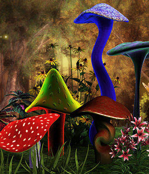 Mushroom Fantasy by 3DSublimeProductions