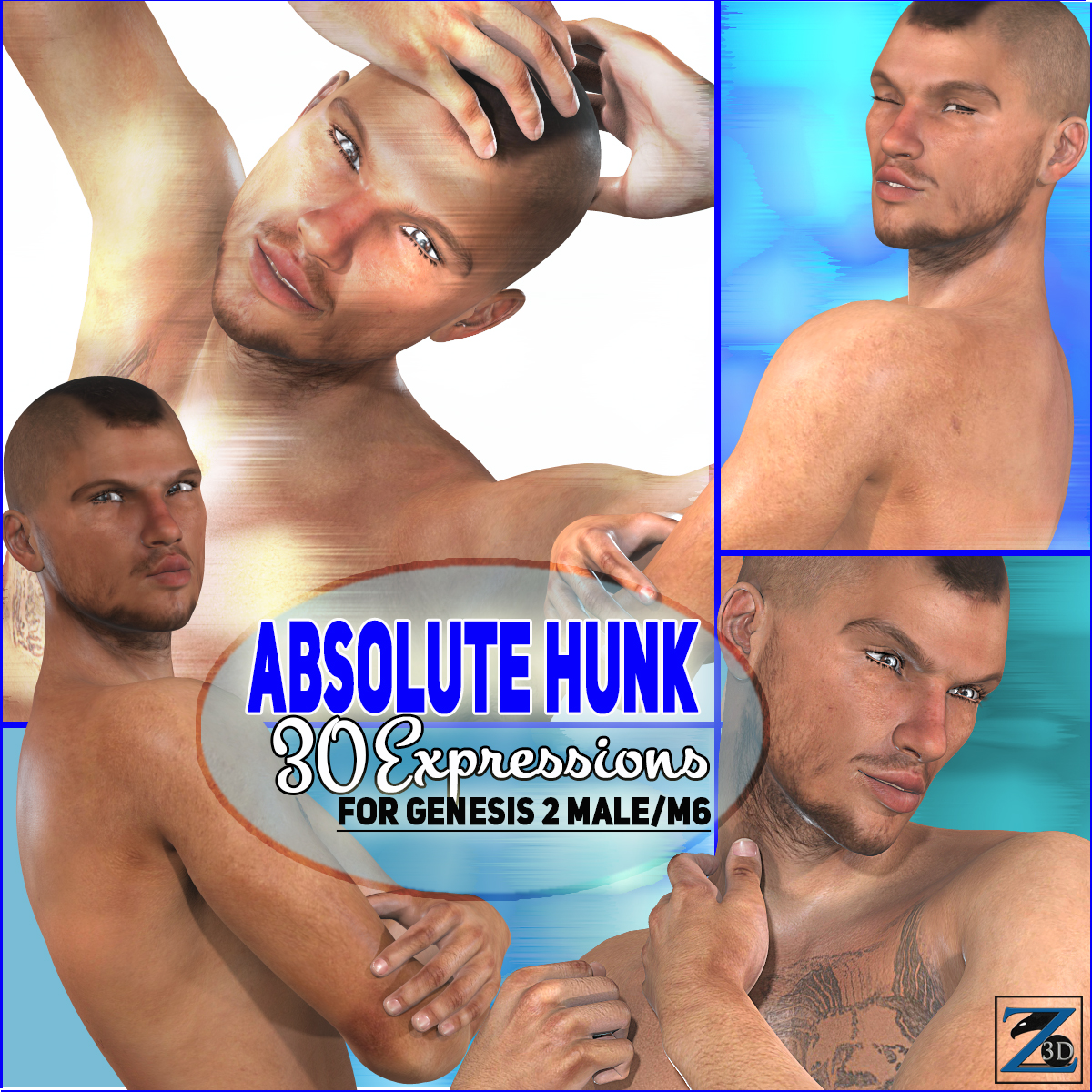 Z Absolute Hunk Expressions
