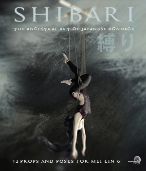 SHIBARI 3D Figure Essentials 3D Models pamawo