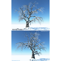 Flinks Winter Trees 3 image 4
