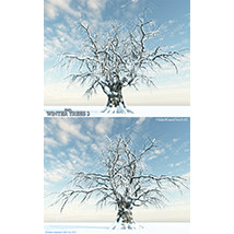 Flinks Winter Trees 3 image 5