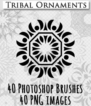 Tribal Ornaments Photoshop Brushes and PNG 2D Merchant Resources skaior