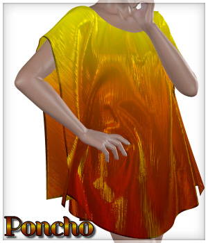 Dynamics 02 - Poncho for Victoria 4 3D Figure Assets Lully
