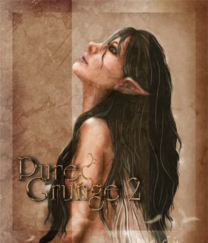 Pure Grunge 2 2D Graphics Merchant Resources antje