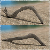 Photo Props: Driftwood image 4