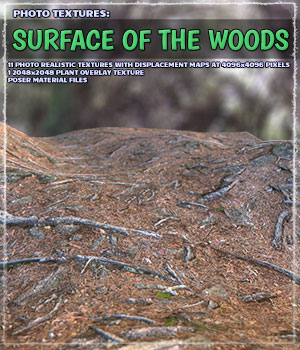 Photo Textures: Surface of the Woods 2D Graphics ShaaraMuse3D