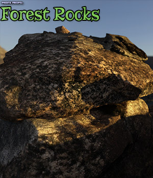 Photo Props: Forest Rocks 3D Models ShaaraMuse3D