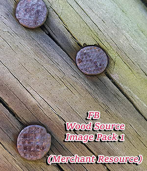 FB Wood Source Image Pack (Merchant Resource) 2D Merchant Resources fictionalbookshelf