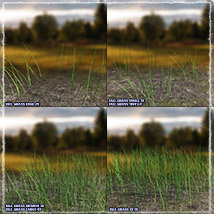 Photo Plants: Grass World image 5