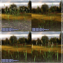 Photo Plants: Grass World image 6