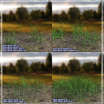 Photo Plants: Grass World image 7
