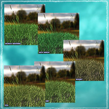 Photo Plants: Grass World image 8