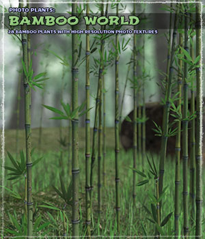 Photo Plants: Bamboo World 3D Models ShaaraMuse3D