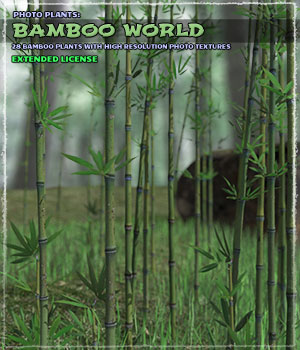 Photo Plants: Bamboo World - Extended License 3D Models Extended Licenses ShaaraMuse3D