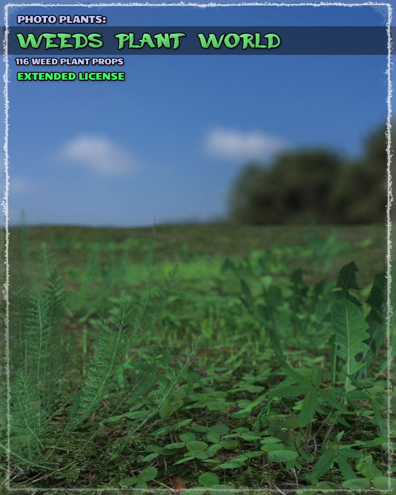 Photo Plants: Weeds Plant World - Extended License by ShaaraMuse3D