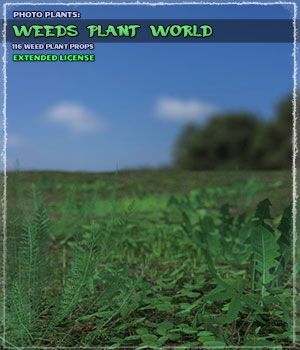 Photo Plants: Weeds Plant World - Extended License 3D Models Extended Licenses ShaaraMuse3D