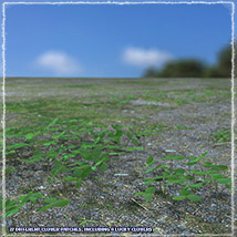 Photo Plants: Weeds Plant World - Extended License image 4