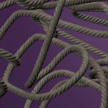 The Rope for V4 image 4