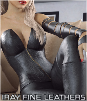 Iray Fine Leather Shaders 3D Figure Assets Merchant Resources lilflame