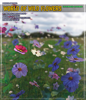 Photo Plants: World of Wildflowers - Extended License 3D Models Extended Licenses ShaaraMuse3D