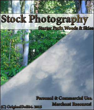 Stock Photography: Starter Pack; 2D Graphics Merchant Resources MarieMcKennaDesigns