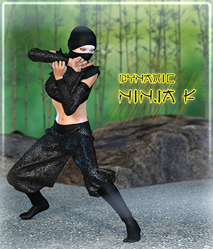 Dynamic Ninja F 3D Figure Assets Frequency