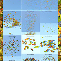 Flinks Autumn Leaves 2 image 6