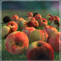 Photo Buffet: Autumn Fruit - Extended Licence image 2