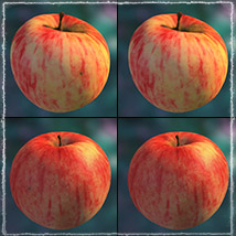 Photo Buffet: Autumn Fruit - Extended Licence image 4