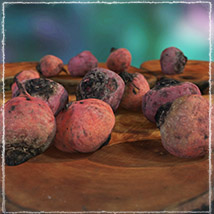 Photo Buffet: Root Vegetables image 3