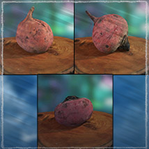 Photo Buffet: Root Vegetables image 6