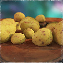 Photo Buffet: Root Vegetables - Extended License image 2