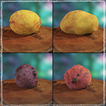 Photo Buffet: Root Vegetables - Extended License image 5