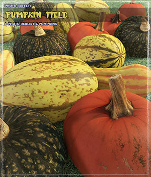 Photo Buffet: Pumpkin Field 3D Models ShaaraMuse3D