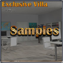 Exclusive Villa 4: The Office image 5
