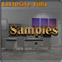 Exclusive Villa 4: The Office image 6