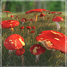 Photo Props: Forest Mushrooms image 3