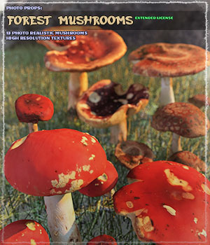 Photo Props: Forest Mushrooms - Extended License 3D Models Extended Licenses ShaaraMuse3D
