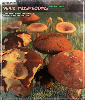 Photo Props: Wild Mushrooms - Extended License 3D Models Extended Licenses ShaaraMuse3D