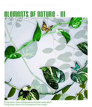 Elements of Nature-III 2D Graphics RajRaja
