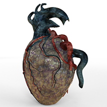 The Gore Shaders For Daz Studio Iray image 5