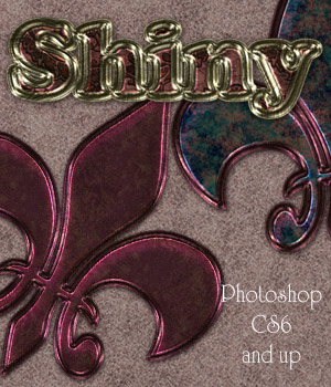 Shiny Photoshop Styles 2D antje