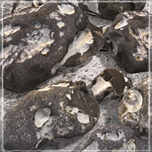 Photo Props: Weathered Rocks - Extended License image 1